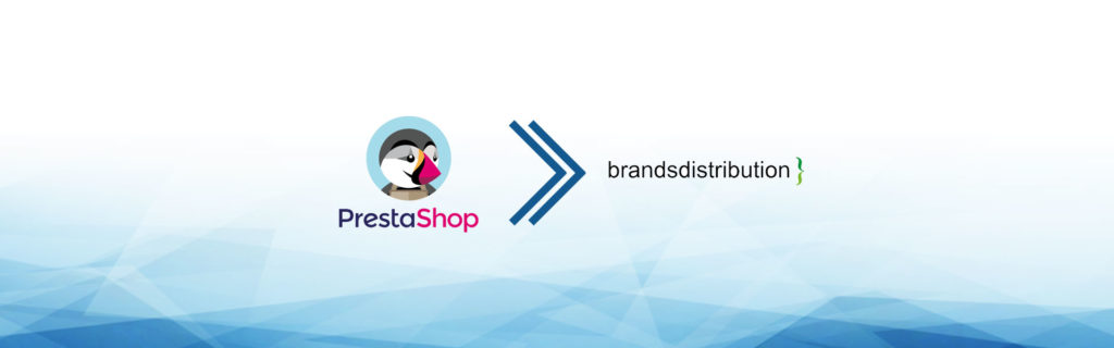 e-commerce dropshipping branddistribution