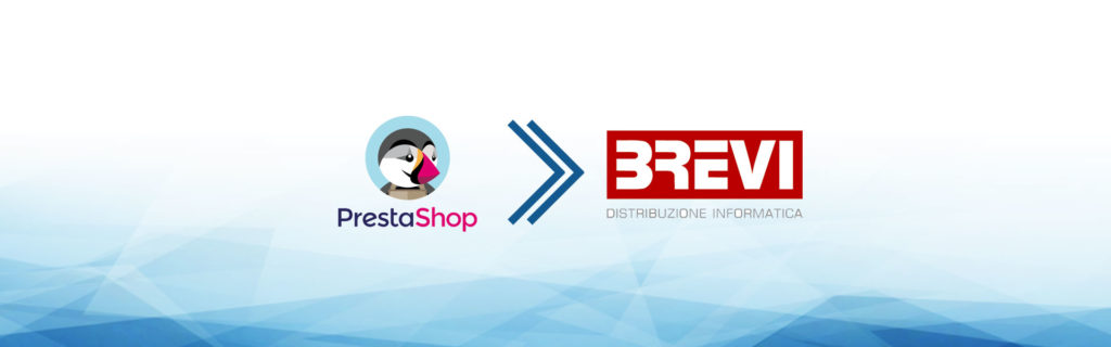 e-commerce dropshipping brevi