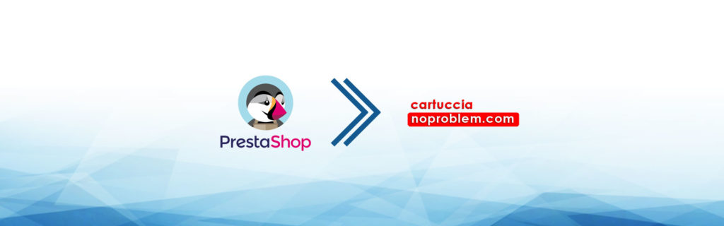 e-commerce dropshipping cartuccie-noproblem