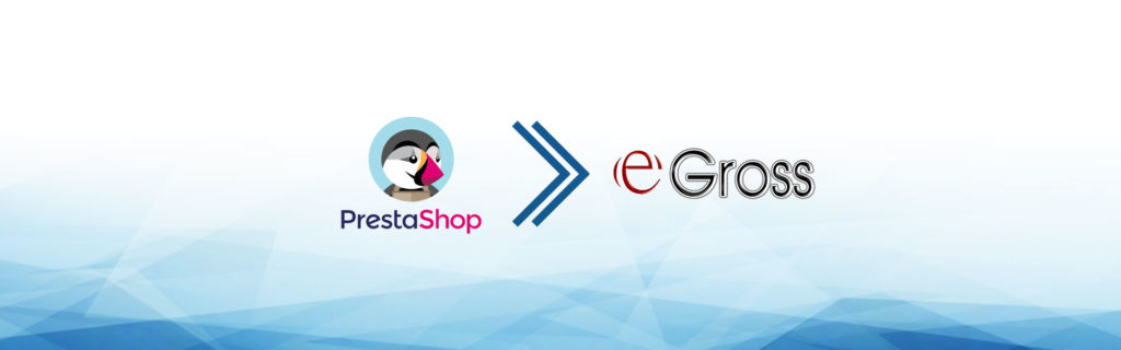e-commerce dropshipping e-gross