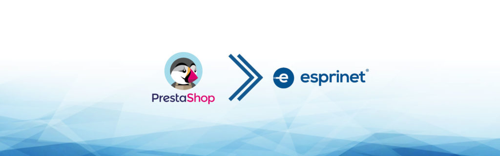 e-commerce dropshipping esprinet