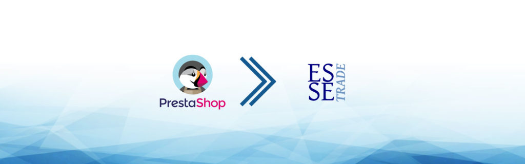 e-commerce dropshipping essetrade