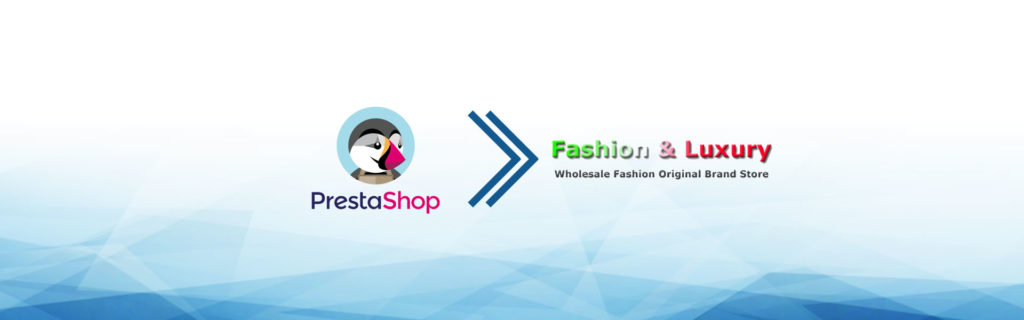 e-commerce dropshipping fashionandlux