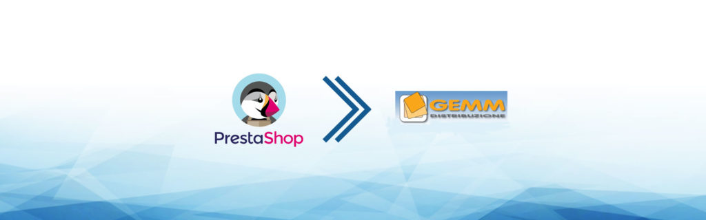e-commerce dropshipping gemm