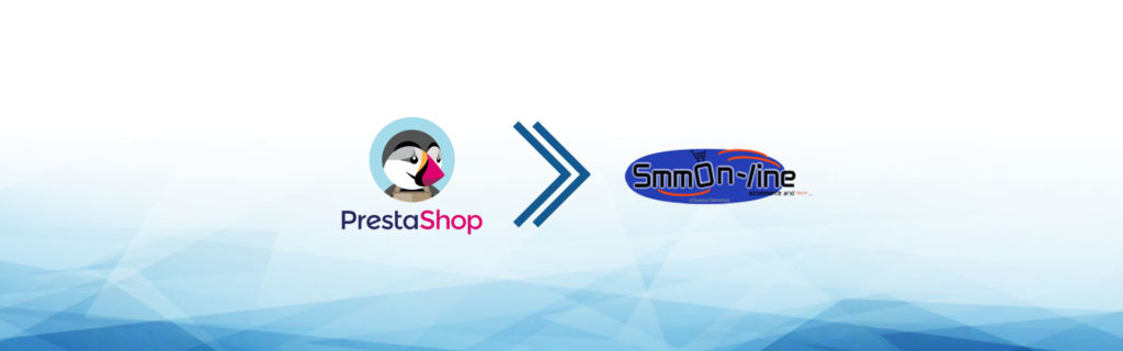 e-commerce dropshipping smmon-line